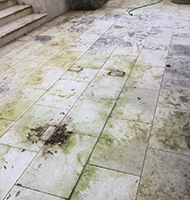 exterior dirty and worn limestone tiles