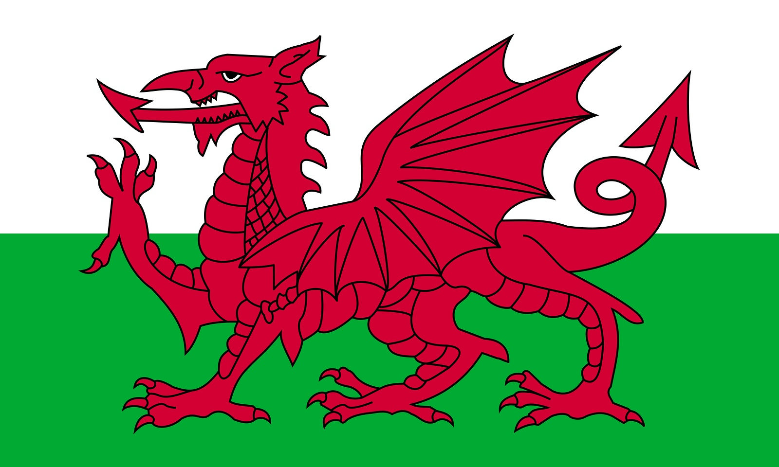 Wales Domain Name Launch