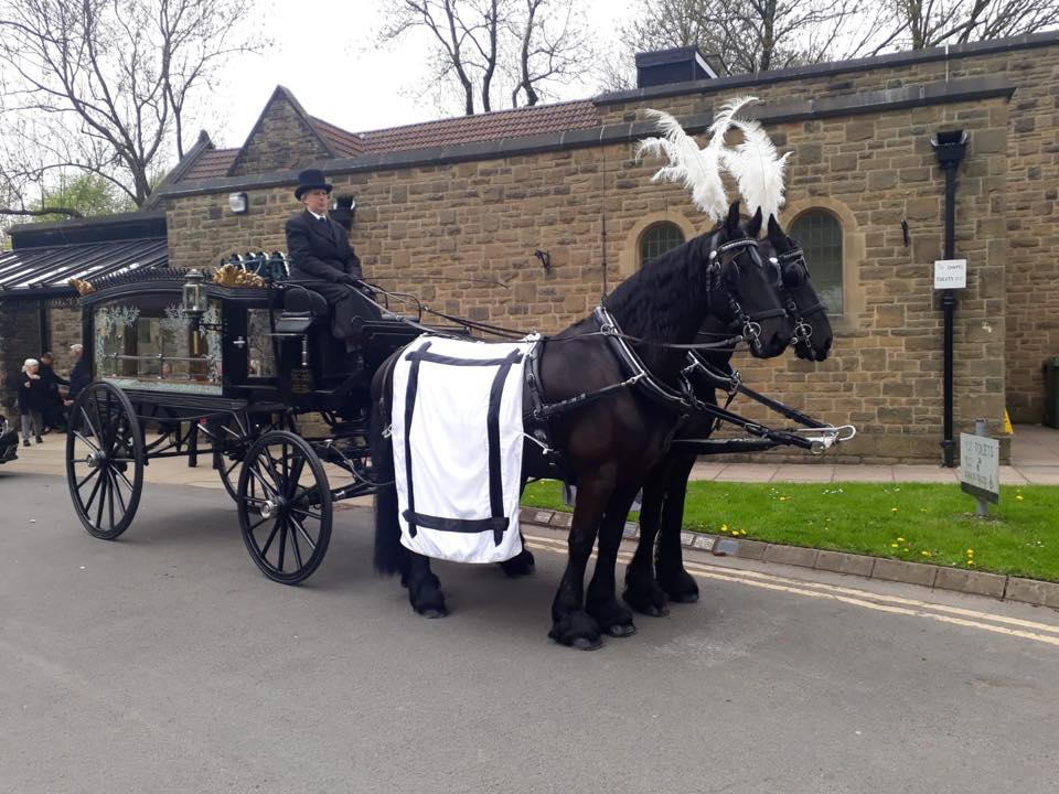 funeral hearse carriage drawn by black friesian horses