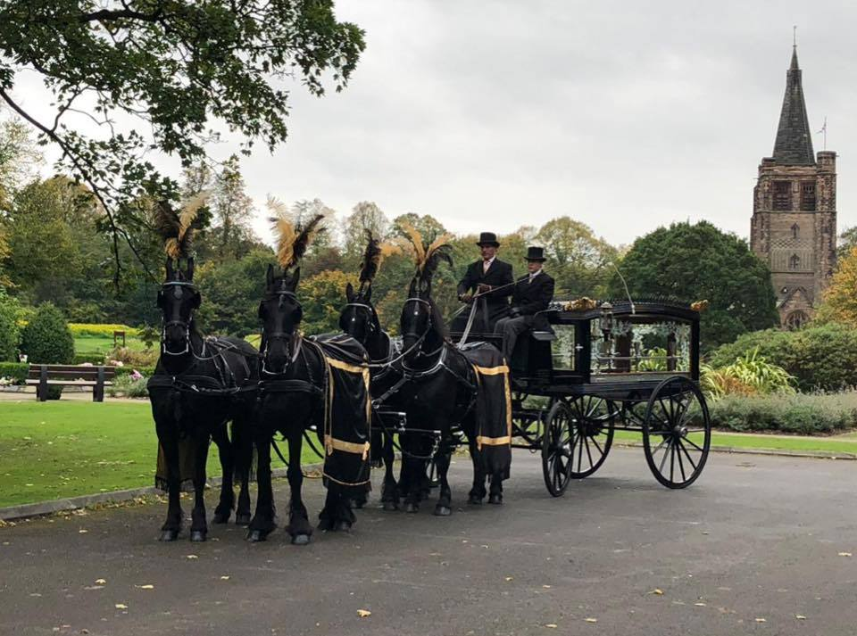 horse drawn funeral hearse with a team of black horses