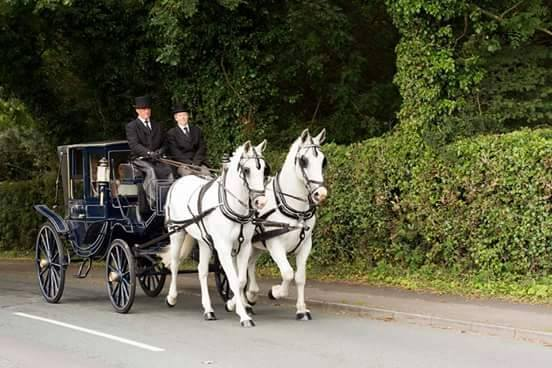 Horse Drawn Funerals in Chorley