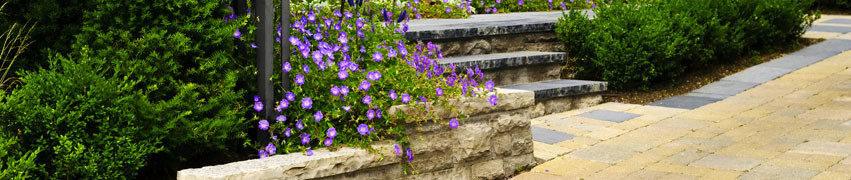 How to Landscape Your Garden