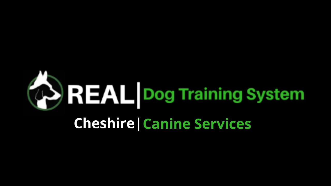 CHESHIRE CANINE SERVICES