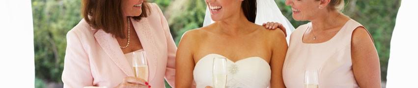 Benefits of Luxury Toilets for my Wedding
