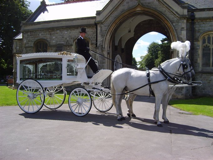 White Horse Drawn Hearse Hockley, Essex and London
