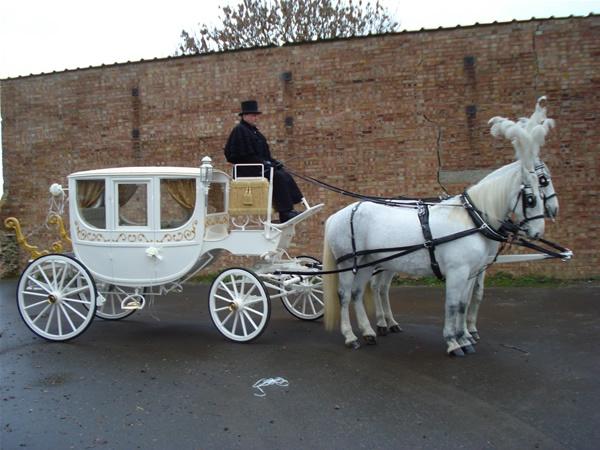 Wedding Horse Drawn Carriage