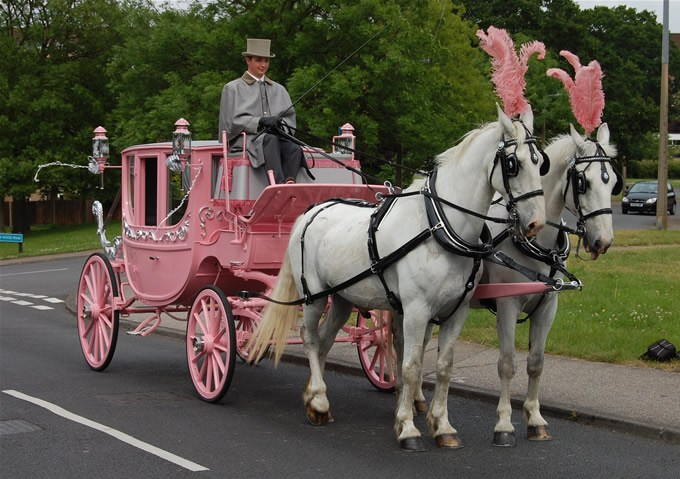 Horse Drawn Carriage Essex
