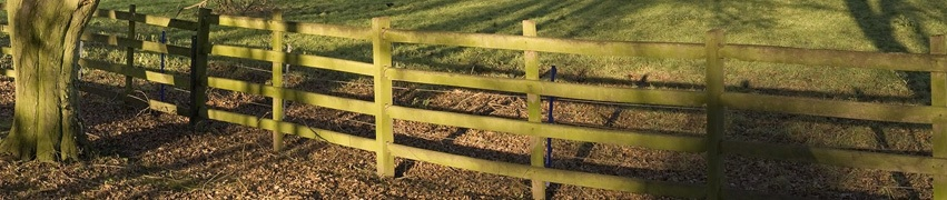 Does a fence increase property value