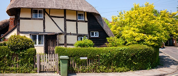 traditional English cottage with hedge in front garden