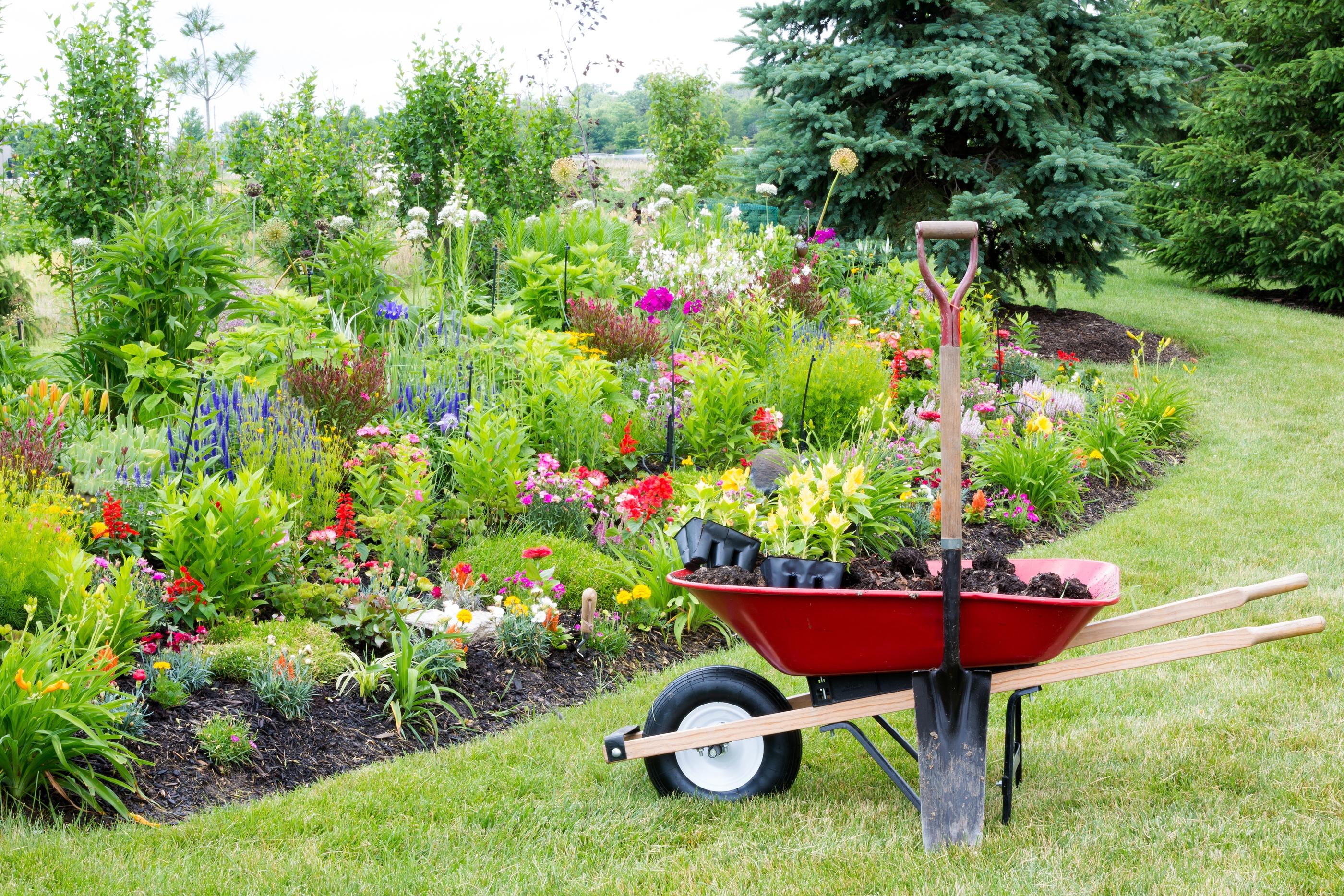 Planting Summer Vegetables