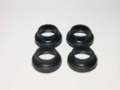 Trunnion Dust Seal