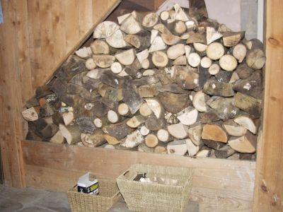 Logs from our copse